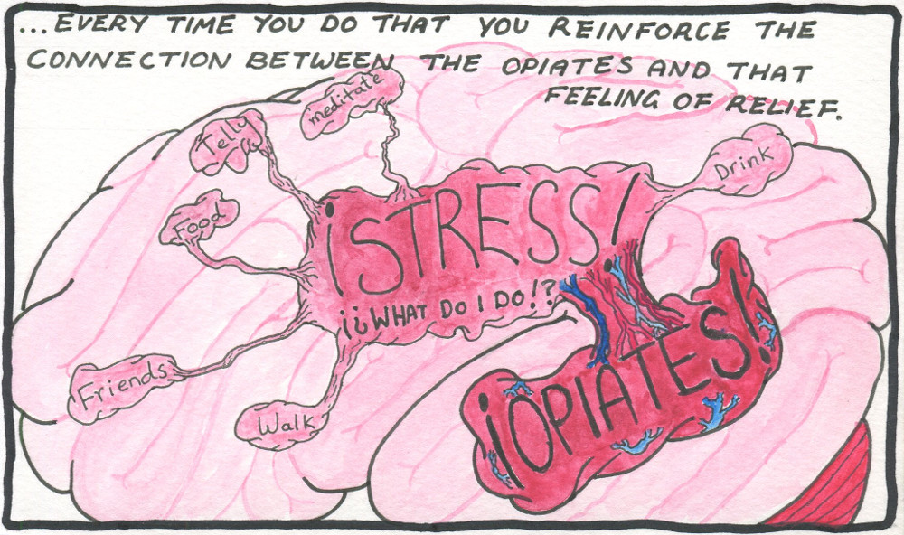 Text: ...every time you do that you reinforce the connection between the opiates and that feeling of relief. Image: A fleshy pictogram of a brain. In the centre it says: 'STRESS! WHAT DO I DO?!?'. Directly connected to this, pulsing with blood and covered in thick veins, is the word: 'OPIATES!'. The connection between the two is thick and veiny. By contrast, the other options: 'Friends, walk, food, meditate, telly, drink', look pale and withered, with some of the connections looking so weak that they might break altogether.